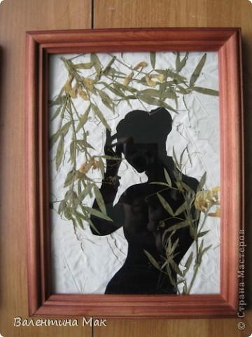 Картина, панно, рисунок, Мастер-класс Аппликация: Плоскостная флористика+силуэтное вырезание. Маленький МК. Бумага бархатная, Материал природный. Фото 4