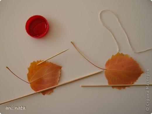 Мастер-класс Моделирование: Хризантемы из осенних листьев. Бумага гофрированная, Листья, Нитки Праздник осени. Фото 3