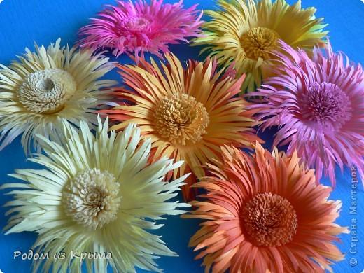 Цветы хризантемы своими руками