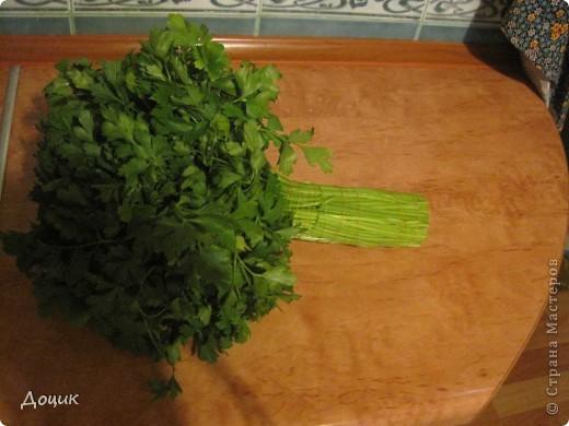 Кулинария, Мастер-класс Рецепт кулинарный: Как я сохраняю зелень (укроп, петрушку) свежей Продукты пищевые Дебют. Фото 2