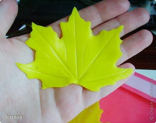 Мастер-класс Лепка: МК кленовые листья из холодного фарфора Фарфор холодный. Фото 11