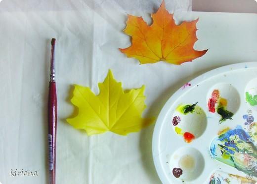 Мастер-класс Лепка: МК кленовые листья из холодного фарфора Фарфор холодный. Фото 12