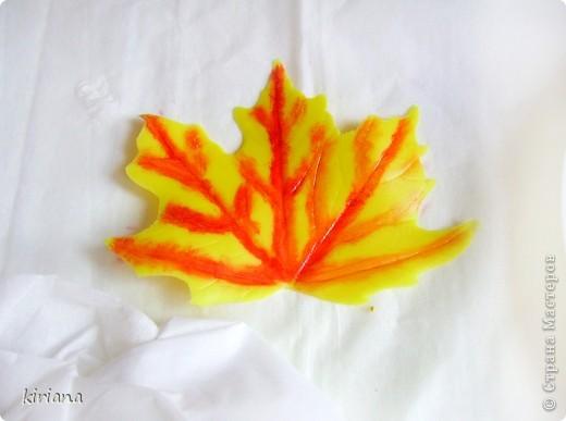 Мастер-класс Лепка: МК кленовые листья из холодного фарфора Фарфор холодный. Фото 13