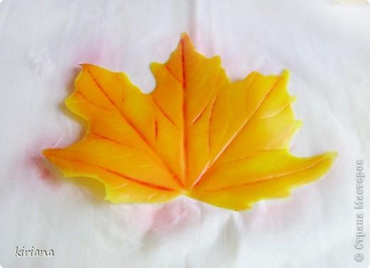 Мастер-класс Лепка: МК кленовые листья из холодного фарфора Фарфор холодный. Фото 14