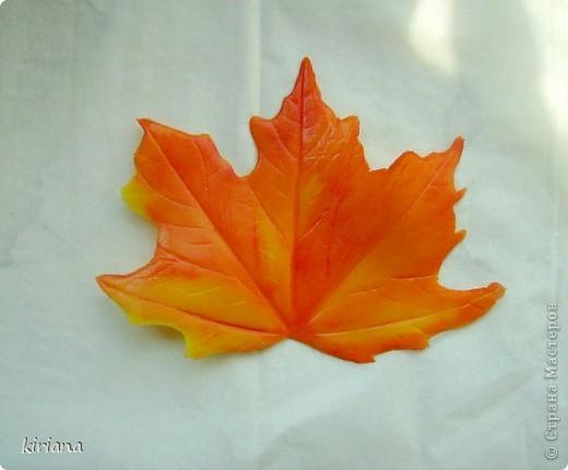 Мастер-класс Лепка: МК кленовые листья из холодного фарфора Фарфор холодный. Фото 15