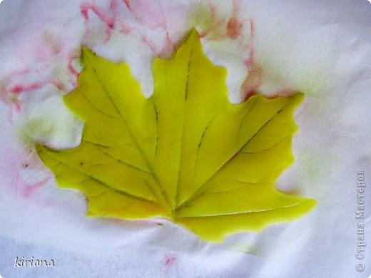 Мастер-класс Лепка: МК кленовые листья из холодного фарфора Фарфор холодный. Фото 17