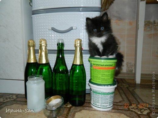 Фоторепортаж: Годовасие котэ День рождения. Фото 7