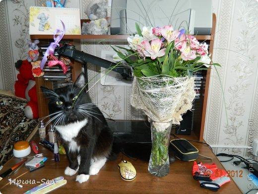 Фоторепортаж: Годовасие котэ День рождения. Фото 32