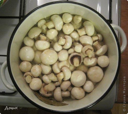Кулинария, Мастер-класс Рецепт кулинарный: «Шампиньоны маринованные» Продукты пищевые. Фото 8