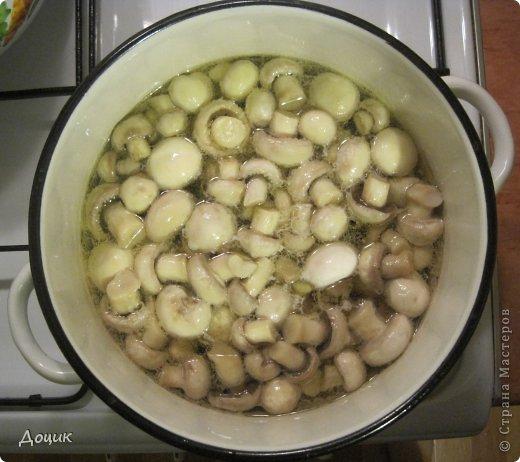 Кулинария, Мастер-класс Рецепт кулинарный: «Шампиньоны маринованные» Продукты пищевые. Фото 9