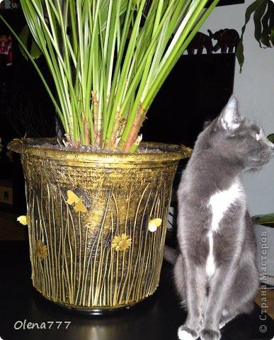 Доброго дня или ночи, жители и гости Страны Мастеров! А я к вам с цветочными горшками. Горшок номер раз в виде цветка. Насколько хорош он у меня получился - судить вам. . Фото 25