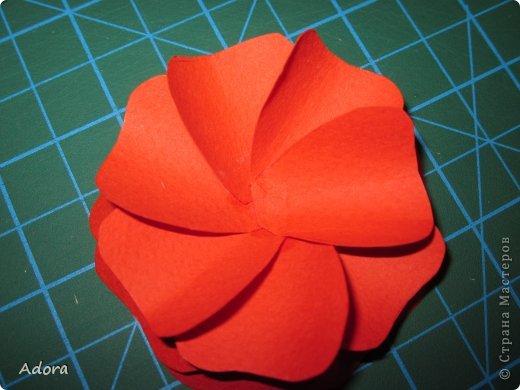 Мастер-класс: МК больших роз  Бумага Дебют. Фото 7
