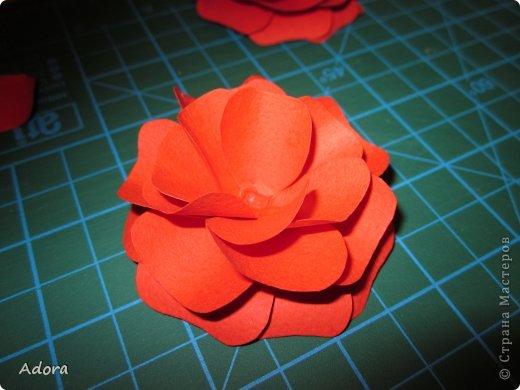 Мастер-класс: МК больших роз  Бумага Дебют. Фото 9