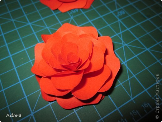 Мастер-класс: МК больших роз  Бумага Дебют. Фото 10