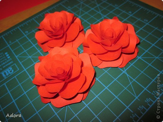 Мастер-класс: МК больших роз  Бумага Дебют. Фото 11