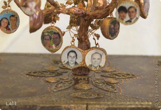 Как сделать родословное дерево своими руками фото