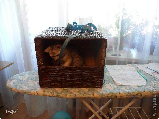 Мастер-класс Плетение: Домик для кошки Бумага газетная, Коробки, Ткань. Фото 5