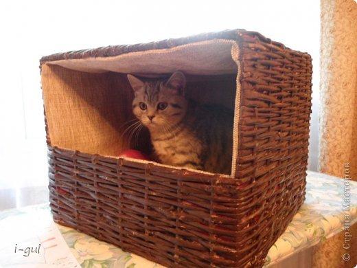 Мастер-класс Плетение: Домик для кошки Бумага газетная, Коробки, Ткань. Фото 1