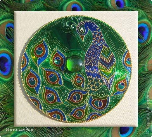 Картина, панно, рисунок Роспись: Диковинные птицы Диски компьютерные, Краска. Фото 1