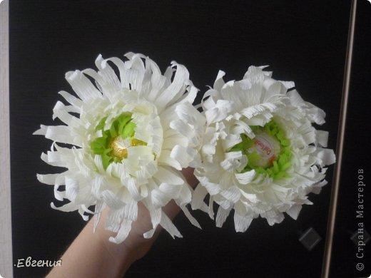 МК-Хризантемы Бумага