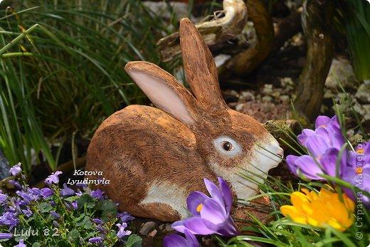 Скоро Пасха, во многих странах символом этого праздника является пасхальный заяц. Вот я и решила его сделать. . Фото 2