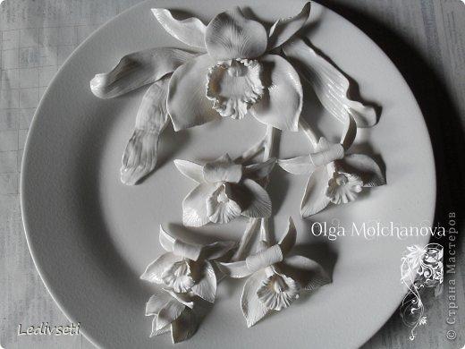 """Мастер-класс, Поделка, изделие Лепка: Мастер-класс """"Орхидея из холодного фарфора"""" Фарфор холодный"""