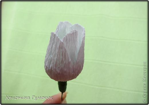 Мастер-класс, Свит-дизайн Бумагопластика: Цветы... как я их делаю... Бумага гофрированная. Фото 9