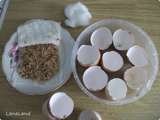 Мастер-класс: яйца,пшеница мини-корзинка Пасха. Фото 32