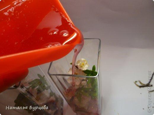 Мастер-класс: Живая радуга. Легко и безопасно даже для детей). Материал природный. Фото 17