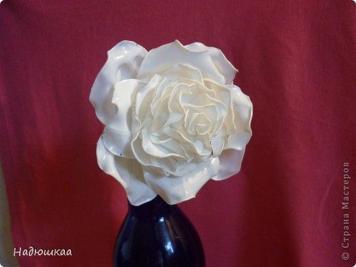 Мастер-класс: М.К. Белая роза из молочной бутылки Бутылки пластиковые. Фото 1