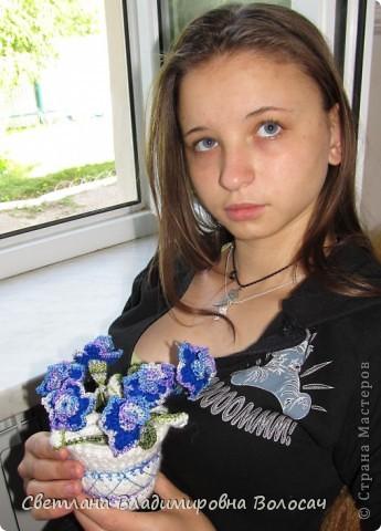 букеты срезанных цветов....