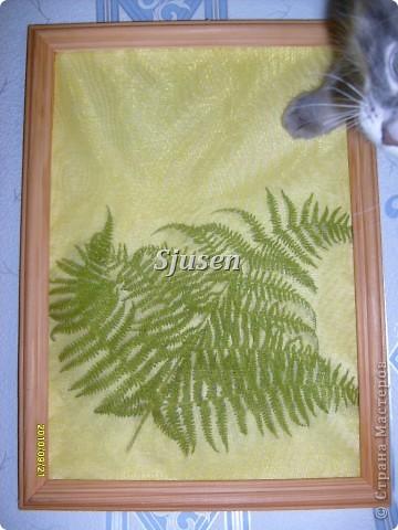 Мастер-класс,  Квиллинг, : Медвежонок))) (+МК) Вата, Полосы бумажные, Ткань Отдых, . Фото 20