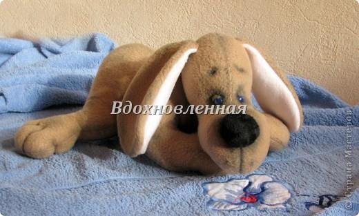 Игрушка Шитьё: Собачка Сонечка Ткань. Фото 6