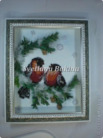 Картина, панно, рисунок Квиллинг: Снегири на ветвях хвои. Бумага Новый год, Рождество. Фото 2