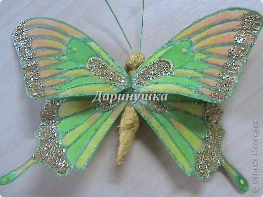 Мастер-класс: Мои бабочки + МК Ткань. Фото 1