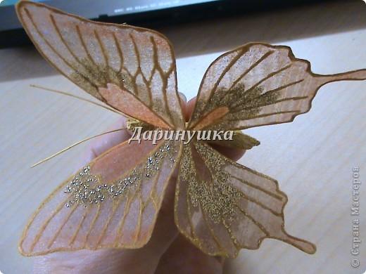 Мастер-класс: Мои бабочки + МК Ткань. Фото 2