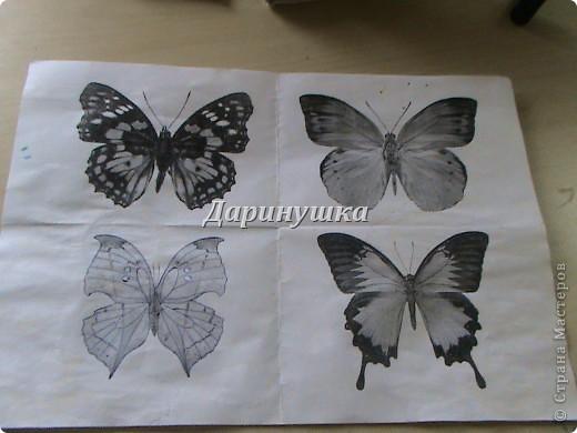 Мастер-класс: Мои бабочки + МК Ткань. Фото 5