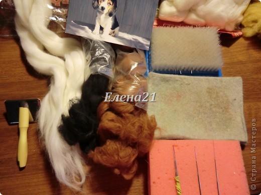 Мастер-класс Валяние (фильцевание): мастер-класс по щеночку Бигли (часть 1) Шерсть Дебют. Фото 3