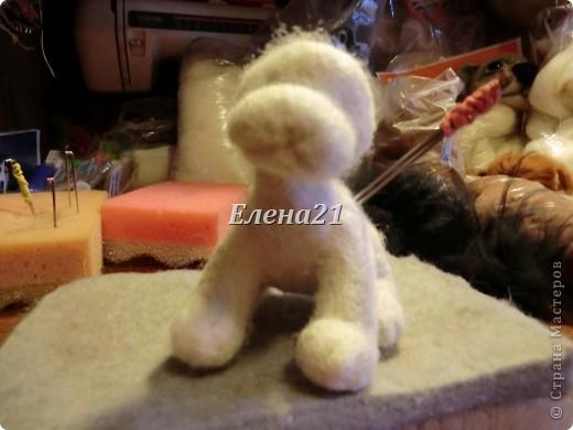 Мастер-класс Валяние (фильцевание): мастер-класс по щеночку Бигли (часть 1) Шерсть Дебют. Фото 29