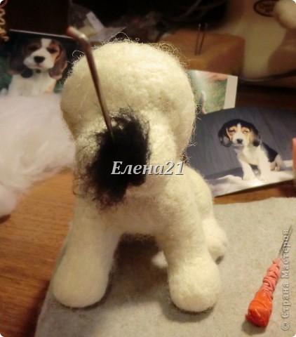 Мастер-класс Валяние (фильцевание): мастер-класс по щеночку Бигли (часть 1) Шерсть Дебют. Фото 40