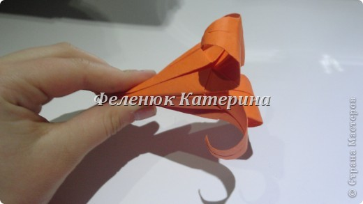 Мастер-класс Оригами: НАРЦИС