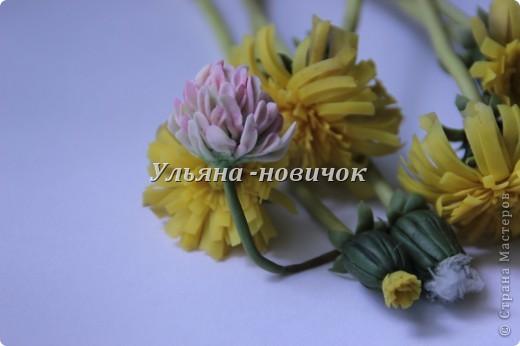 Мастер-класс, Поделка, изделие, Флористика Лепка: Как я делала цветок клевера. МК клевер. Фарфор холодный. Фото 1