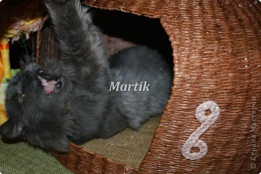 Поделка, изделие Плетение: Домик для кота Бумага. Фото 5