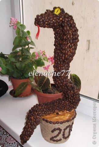 Мастер-класс Моделирование: Кофейная змеюшечка. Гипс, Клей, Кофе, Шпагат Новый год. Фото 2