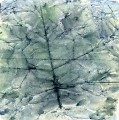 Призрачное дерево