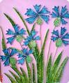Василек - мой любимый цветок!