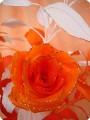 солнечные розы в пасмурный день