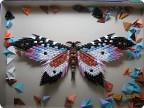 Автор: Жаркова Евгения Источник: Страна мастеров Бабочка Оригами модульное.