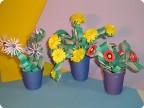 Цветы, которые не нужно поливать