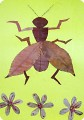 любимые наши насекомые!